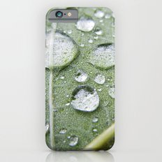 In The Foliage Slim Case iPhone 6s