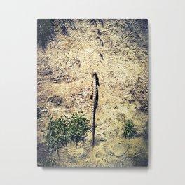 In My Path Metal Print