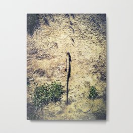 In My Path Metal Print