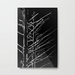Deep Dark Woods Metal Print