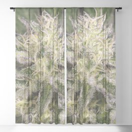 Girl scout cookie bud Sheer Curtain