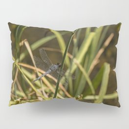 Dragonfly in the marsh Pillow Sham