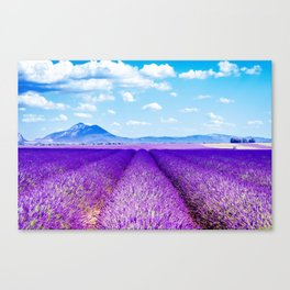 Passing Provence Canvas Print