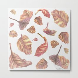 Falling Autumn Leaves Colored Pencil Drawing Autumn Colours Metal Print