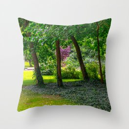 Scenery in a park Throw Pillow