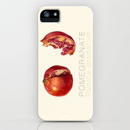 Pomegranate, Punica granatum iPhone Case