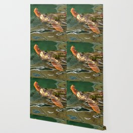 Hands Up For A Plastic Free Ocean Loggerhead Turtle Wallpaper