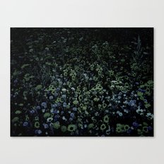 The flower meadow Canvas Print