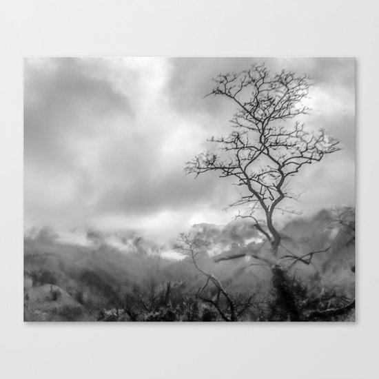 Mist in mountains Canvas Print