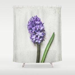 Lilac Hyacinth Shower Curtain