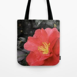 Sweet Crazy Love Tote Bag