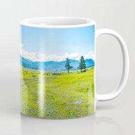 Alpine steppe in the background of snowy mountains. Samakh steppe, Altai Mountains, Russia. Coffee Mug