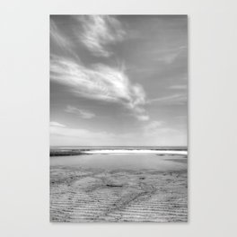 Wing It B&W Canvas Print