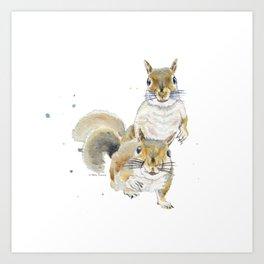 Two Squirrels Art Print