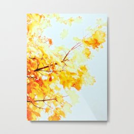 Yellow Maple leaves, Autumn Unfolds Metal Print