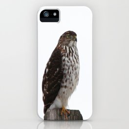 Looking for Mice iPhone Case
