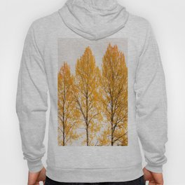 Aspen Trees #decor #buyart #society6 Hoody