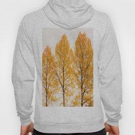 Aspen Trees #decor #society6 #buyart Hoody
