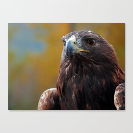 Warrior Canvas Print