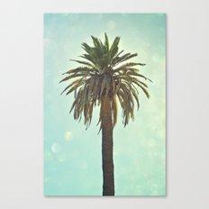 California Palm Canvas Print
