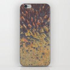 FLEW / PATTERN SERIES 008 iPhone & iPod Skin