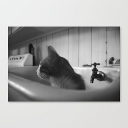 Oliver Suggests a Bath Canvas Print