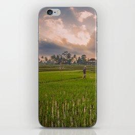 Bali rice field iPhone Skin