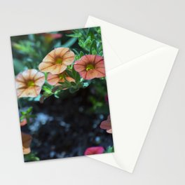 Longwood Gardens - Spring Series 199 Stationery Cards