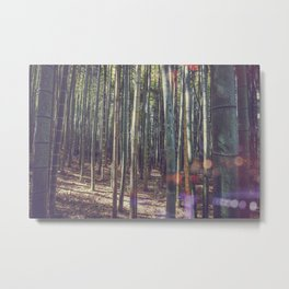 Kyoto Bamboo forest in Japan Metal Print