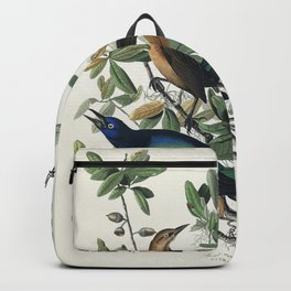 Boat-tailed Grackle from Birds of America (1827) by John James Audubon etched by William Home Lizars Backpack