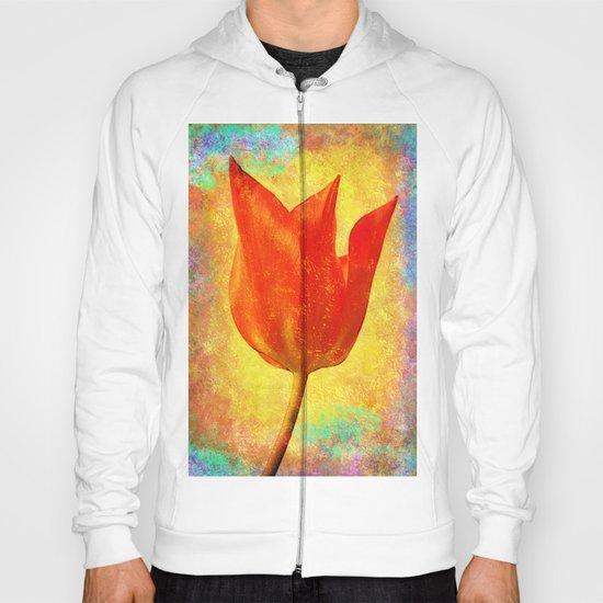 Textured Tulip Hoody