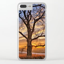 Winter Cottonwood Clear iPhone Case