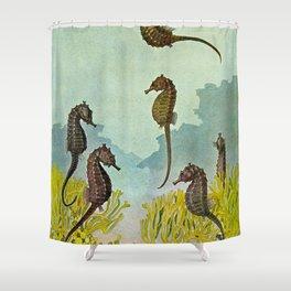 Hippocampus - Hashime Murayama - 1920 Seahorse Illustration Marine Life Shower Curtain