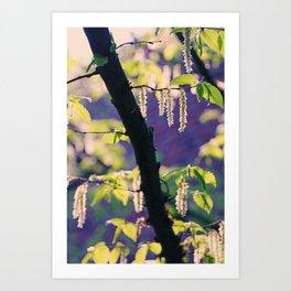 Spring Impression1 Art Print