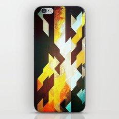 Kaandam iPhone & iPod Skin