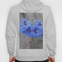 Blue Flowers in Marquette Hoody