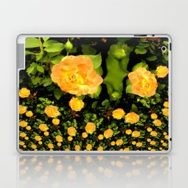 A rose is a rose is a rose.... Laptop & iPad Skin