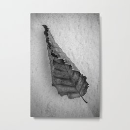 Frozen Leaf. Metal Print