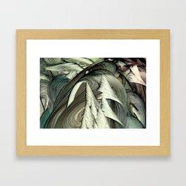 Aspidodelone Framed Art Print
