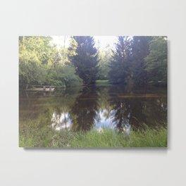 Pioneer Pond Metal Print