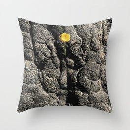 Blackened Earth Throw Pillow