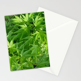 Keep calm and refresh with green momiji leaves Stationery Cards