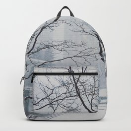 Winter View Backpack