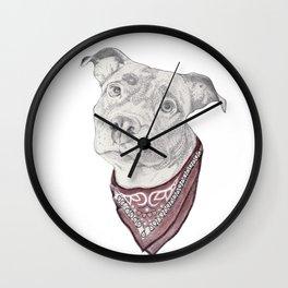 pitbull//dog Wall Clock