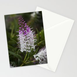 Hebe Lilac Stationery Cards