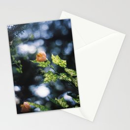 Bells Stationery Cards