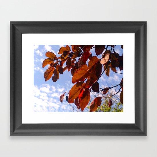 Autumn is in the Air Framed Art Print