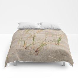 Dune Comforters