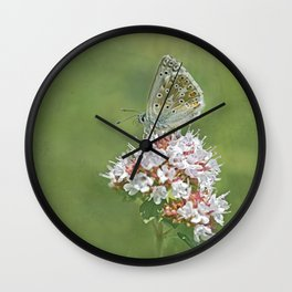 Chalk Hill Blue Butterfly Wall Clock
