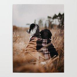 /// WILD FRIENDS /// Poster